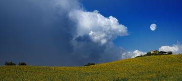 Nubes masivas sobre campo de los girasoles imagenes de archivo