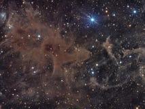 Nubes moleculares en Cepheus Fotos de archivo libres de regalías