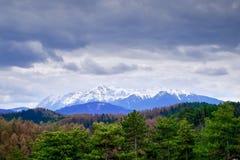Nubes, montañas y bosque verde Fotos de archivo libres de regalías