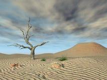 Nubes muertas del árbol y de tormenta