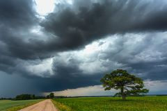 Nubes oscuras de la tempestad de truenos sobre el roble fotos de archivo libres de regalías