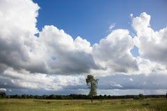 Nubes oscuras sobre el campo Fotos de archivo libres de regalías