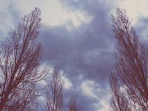 Nubes pacíficas imagen de archivo
