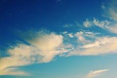 Nubes que forman una silueta del pájaro Imagen de archivo libre de regalías