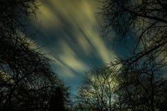 Nubes que pasan en la luz de luna cerca sobre un bosque y en un cielo nocturno por completo de estrellas imagenes de archivo