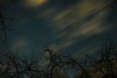 Nubes que pasan en la luz de luna cerca sobre un bosque y en un cielo nocturno por completo de estrellas Imágenes de archivo libres de regalías