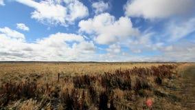 Nubes que se mueven sobre los llanos de la Patagonia almacen de metraje de vídeo