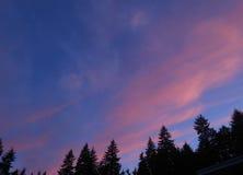 Nubes rosadas en cielo azul Fotografía de archivo