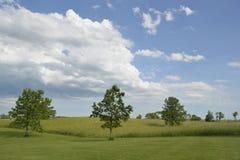 Nubes sobre campo Fotografía de archivo
