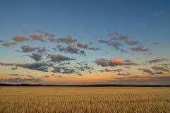 Nubes sobre el campo Imagenes de archivo