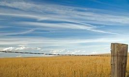 Nubes sobre el campo 5 fotografía de archivo