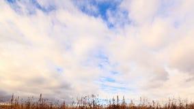 Nubes sobre hierba seca. De de arriba a abajo. La del tiempo