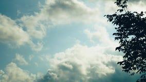 Nubes sobre la casa Las nubes arrastran el cielo azul, árboles se inclinan del viento metrajes
