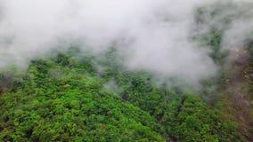 Nubes sobre las colinas en el parque nacional de la garganta de Taroko en Taiwán Silueta del hombre de negocios Cowering metrajes