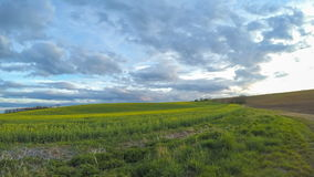 Nubes sobre los campos de la primavera Lapso de tiempo rotativo metrajes