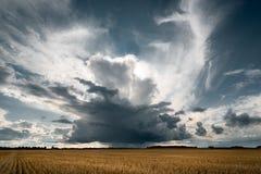 Nubes tempestuosas en los campos de oro imagenes de archivo