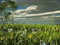 Nubes tempestuosas sobre un prado verde Fotografía de archivo libre de regalías