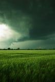 Nubes tormentosas sobre un campo Fotos de archivo