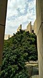 Nubes y árbol foto de archivo libre de regalías