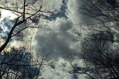 Nubes y árboles Fotografía de archivo