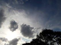 Nubes y árboles oscuros Fotos de archivo