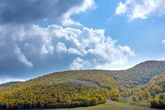 nubes y bosque de la montaña en el otoño Fotos de archivo