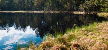 Nubes y bosque sobre el lago Foto de archivo libre de regalías