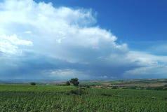 Nubes y cielo azul en campos de granja verdes Fotos de archivo