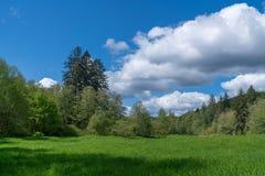 Nubes y cosechas Fotografía de archivo libre de regalías