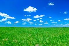 Nubes y prado Imagen de archivo