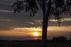 Nubi al tramonto Fotografie Stock Libere da Diritti