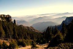 Nubi della foresta Fotografie Stock