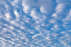 Nubi di cirro in cielo blu Immagini Stock