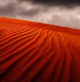 Nubi di pioggia sopra il deserto Fotografia Stock Libera da Diritti