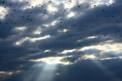 Nubi di tempesta e raggi del sole Fotografia Stock Libera da Diritti