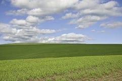 Nubi sopra le colline verdi Fotografie Stock Libere da Diritti