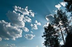 Nubi su cielo blu Immagine Stock Libera da Diritti