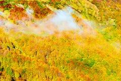 Nuble-se acima da floresta da montanha no tempo de manhã do outono Imagem de Stock Royalty Free