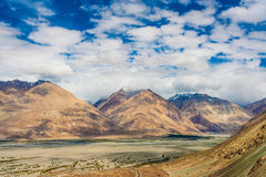 Nubra dal, Ladakh, Himalyas, Indien Fotografering för Bildbyråer