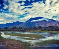 Nubra dal, Ladakh, Indien Arkivfoton