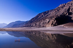 Nubra valley Royalty Free Stock Photos