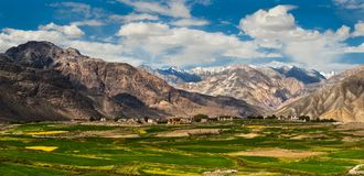 Nubra Valley-2/2011 Royalty Free Stock Photography