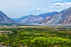 Nubra Valley-6/2011 Stock Photo