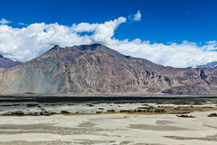 Nubra valley in Himalayas. Ladakh, India Royalty Free Stock Images