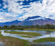 Nubra valley, Ladakh, India Royalty Free Stock Photography