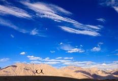 Nubra Valley, Ladakh, India Stock Photography
