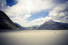 Nubra valley, Ladakh, Kashmir. Royalty Free Stock Photo