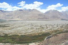 Nubra Valley(Ladakh). Royalty Free Stock Images