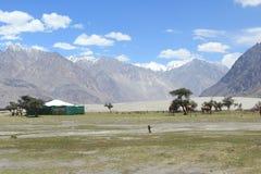Nubra Valley In Ladakh. Stock Images