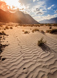 Nubra Valley sand dunes Stock Photography